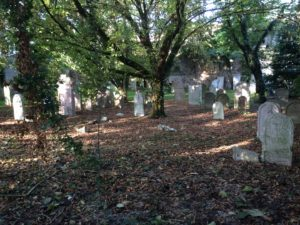 Guided visit in the Jewish cemetery of Padua