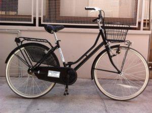Venice Lido island bike rental