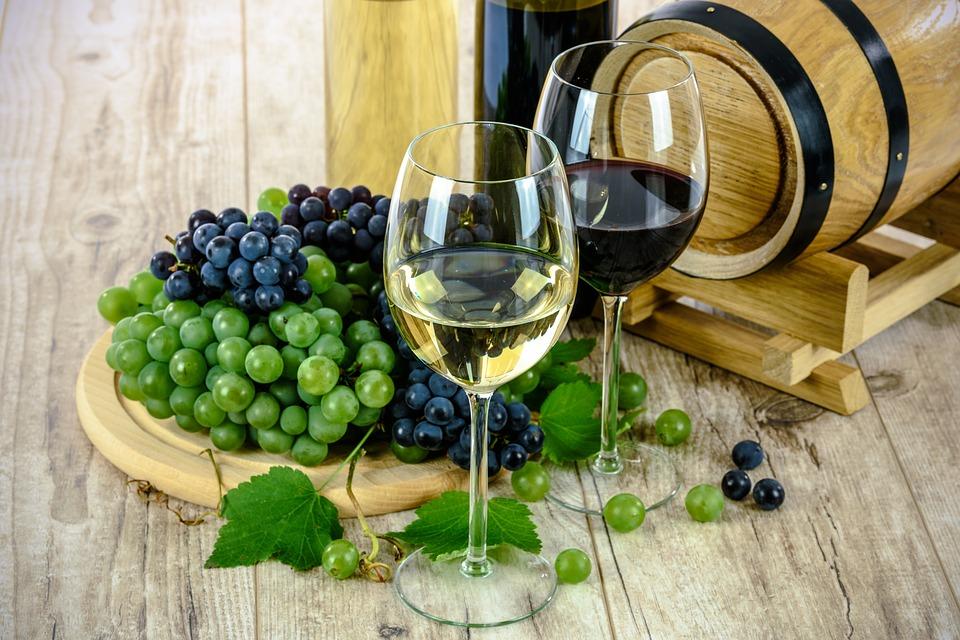 Wine tasting tour in Venice