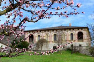 Visit-of-the-Villa-dei-Vescovi-vivoventia