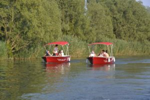 Electric boat excursion: discover the Piave river and have fun!